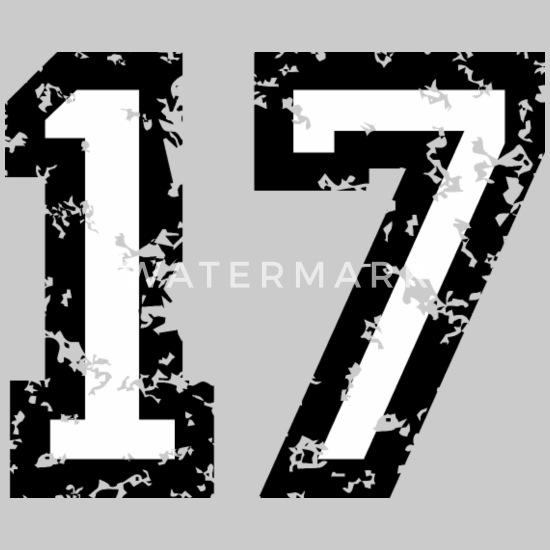 Die Zahl 17