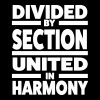 Divided by section - United in Harmony - T-shirt Premium Femme