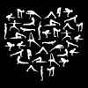 Yoga Asana Heart - Women's Premium T-Shirt