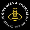 Give Bees a Chance - Black Shirts Edition 2C - Frauen Premium T-Shirt