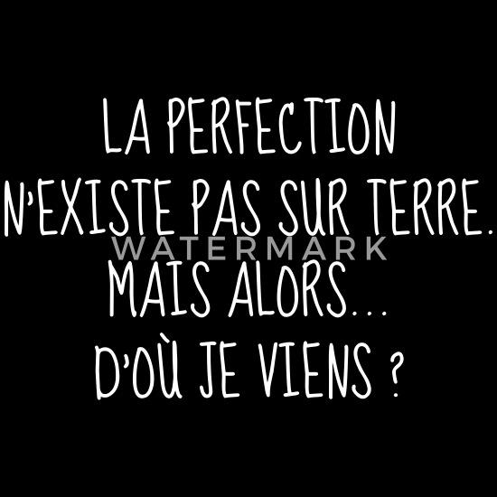 Perfection Parfait Citation Humour Comique T Shirt Premium
