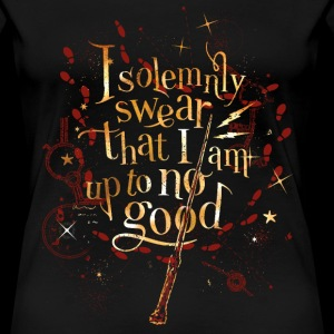 Harry Potter I Solemnly Swear Spruch