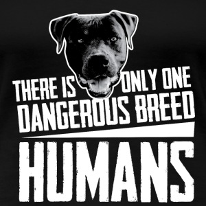 American Staffordshire Terrier Dangerous