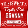 This Is What a Really Cool Granny... - Women's Premium T-Shirt
