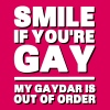 Smile If You're Gay, My Gaydar Is Out of Order - T-shirt Premium Femme