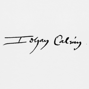John Calvin signature - Teenage Premium T-Shirt