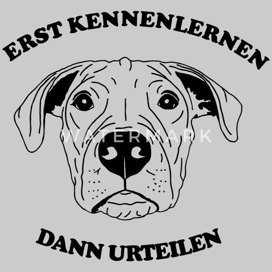 Hunde einander vorstellen | Pawshake Blog
