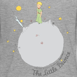 The Little Prince Asteroid B612 Illustration