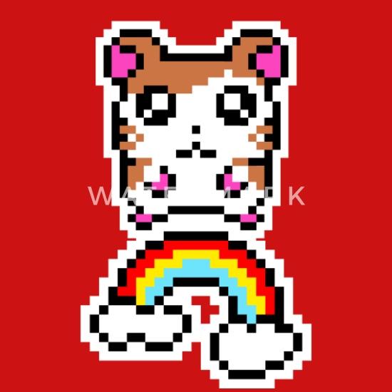 Hamster Avec Arc En Ciel Pixel Pixelart Casquette