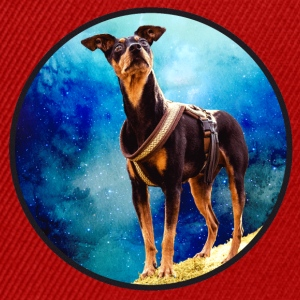 Pinscher in space - Snapback Cap
