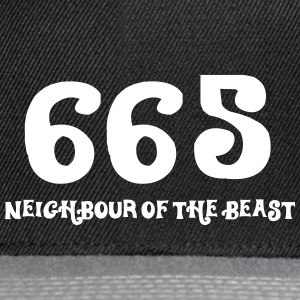 665: The Neighbor Of The Beast - Snapback Cap