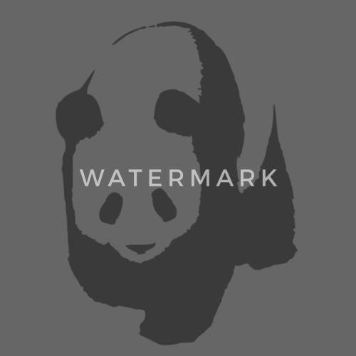 Diseño. delante. Diseño. delante. Diseño. Diseño. delante. Pandas Gorras y  gorros - panda - Gorra snapback gris grafito negro. ¿Quieres personalizar  ... 18d27db8d94