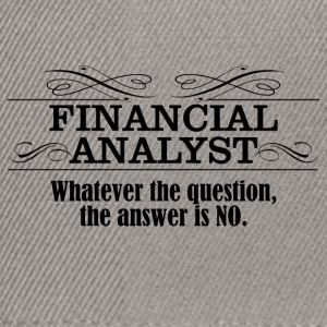 financial analyst - Snapback Cap