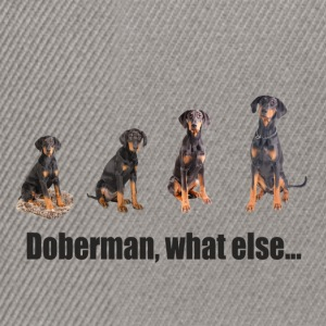 Doberman, what else... - Snapback Cap