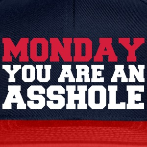 Monday you are an asshole - Snapback Cap