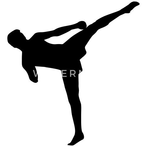 """Résultat de recherche d'images pour """"kick boxer"""""""