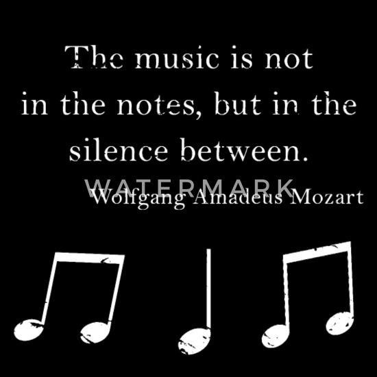 Wolfgang Amadeus Mozart Citation Musique Anglais Veste A Capuche