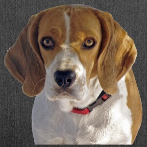 Beagle Hound - Borsa in materiale riciclato