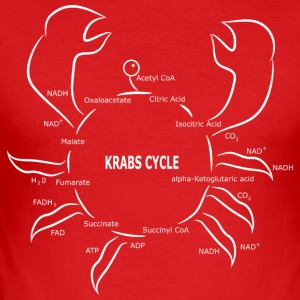 Krabs cyklus - Herre Slim Fit T-Shirt