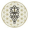Flower of Life with 10 Sephiroth, Kabbalah, 2c - Men's Slim Fit T-Shirt