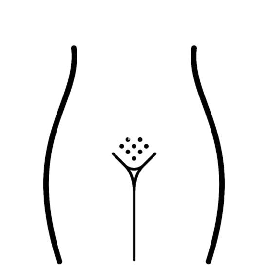 chatte sexe net