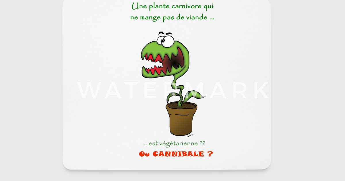 plante carnivore vegetarienne