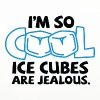 I m so cool, even ice cubes are jealous! - Coasters (set of 4)