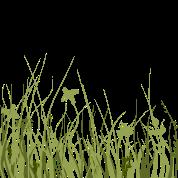 Prato Verde Maglietta Neonato Spreadshirt