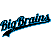 BigBrains | Dicke Titten | Big | Brain T-Shirts