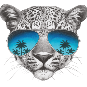 "Animal Planet Leopard ""Cool"""