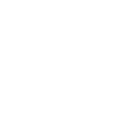 Che Guevara Women T-Shirt Painted