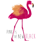 Animal Planet Flamingo Pink is the new black