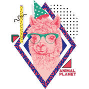 Animal Planet Pinkes Pop Art Lama Grafik
