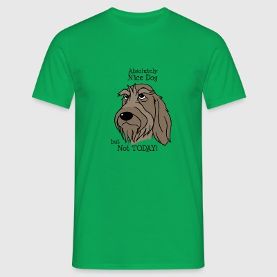 Absolutely Nice Dog - Spinone - Männer T-Shirt