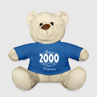 Born-in-Age-2000 Kuscheltiere - Teddy