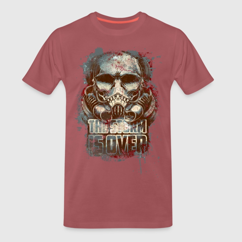 Bordeaux délavé the storm is over Tee shirts - T-shirt Premium Homme