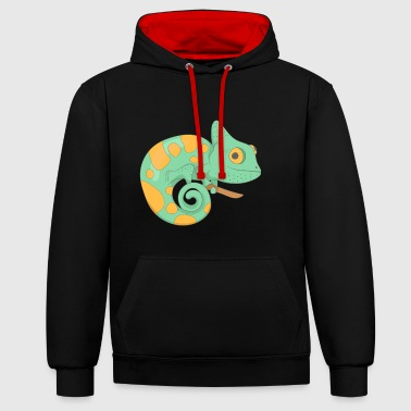 chameleon - Contrast Colour Hoodie