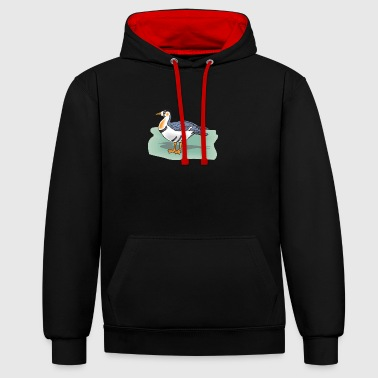 duck162 - Contrast Colour Hoodie