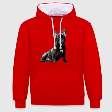 Dog The Dog French Bulldog Pug - Contrast Colour Hoodie