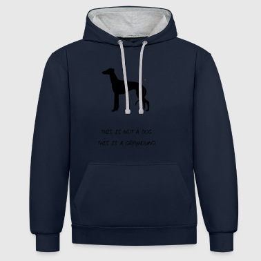 greyhound - Contrast Colour Hoodie