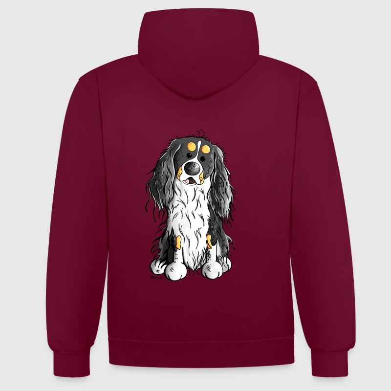 Cavalier King Charles Spaniel - Sweat-shirt contraste