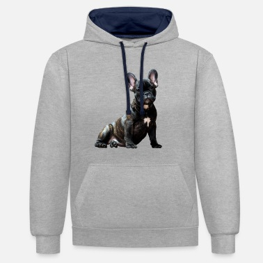 French Bulldog Dog The Dog French Bulldog Pug - Contrast Colour Hoodie