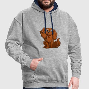 Cavalier King Charles - Feu - Sweat-shirt contraste