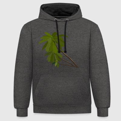 Palm tree - Contrast Colour Hoodie