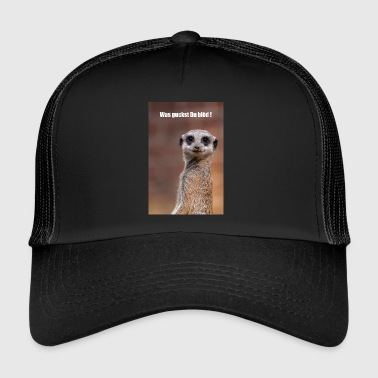 Meerkat looks to me - Trucker Cap