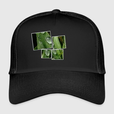 Picture with drops in 4 parts - Trucker Cap