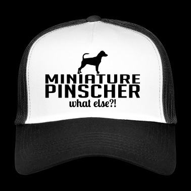 Pinczer whatelse - Trucker Cap