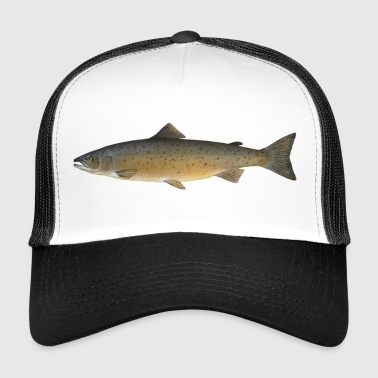 Atlantic salmon - Trucker Cap