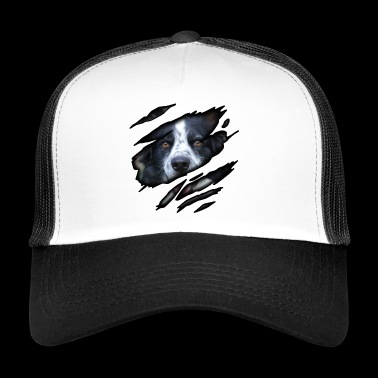 Border Collie i mig - Trucker Cap