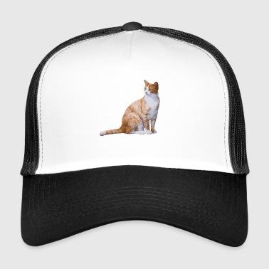 Cat meows in the house - Trucker Cap